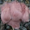 Снимка на Балон с пера розово злато 45см.